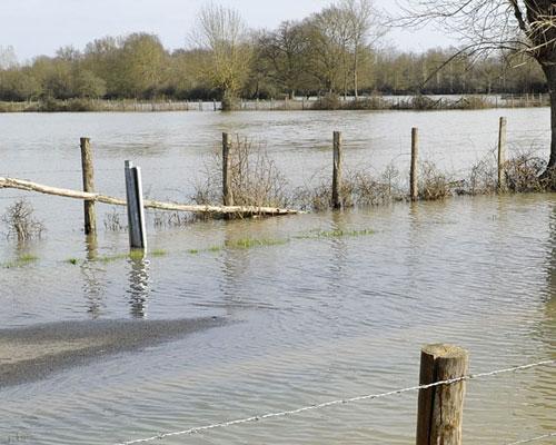 Natural Flood Management Workshop