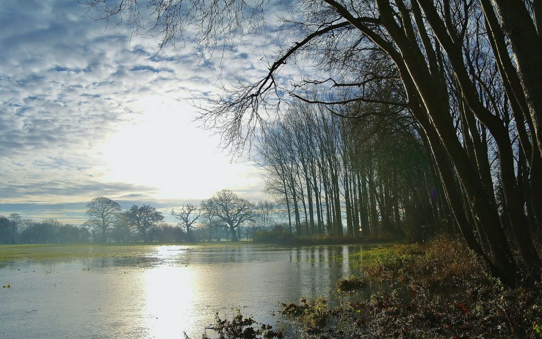 14th November 2019: Shrewsbury Water Forum presents Natural Flood Management